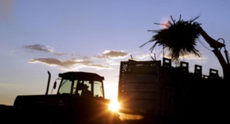 Эксперт рассказала о потенциале украинского рынка биотоплива