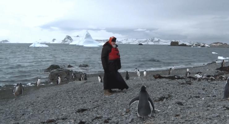 Патриарх Кирилл встретился с пингвинами в Антарктиде