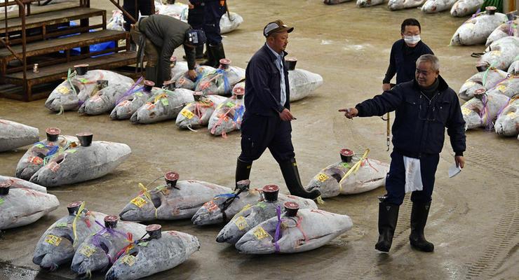 В Токио из-за Олимпиады закрыли крупнейший в мире рыбный рынок