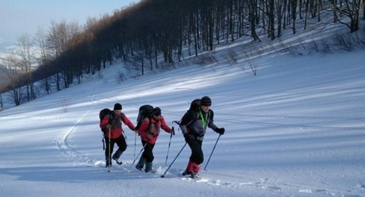 В Карпаты снова пришла зима: снежный покров достиг 80 см