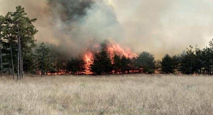 В ГСЧС рассказали об очагах пожаров в Украине
