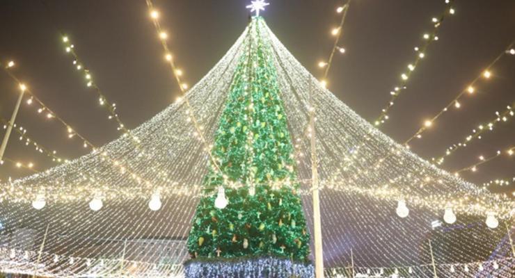 В Киеве начали разбирать главную елку страны