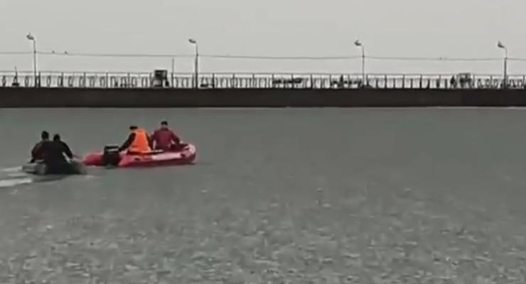 На Донбассе пять собак застряли в море на льдине