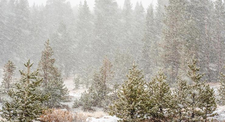 В Украину вернулись снегопады: погода на среду