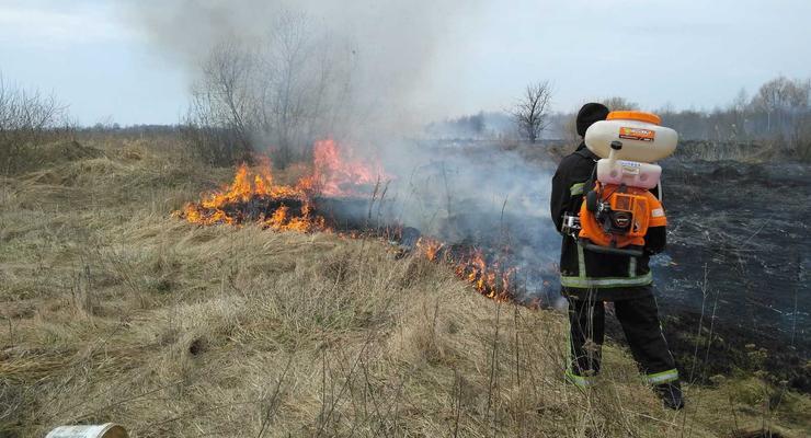 Жгли сухостой: На Житомирщине от огня спасали газовую станцию и дома