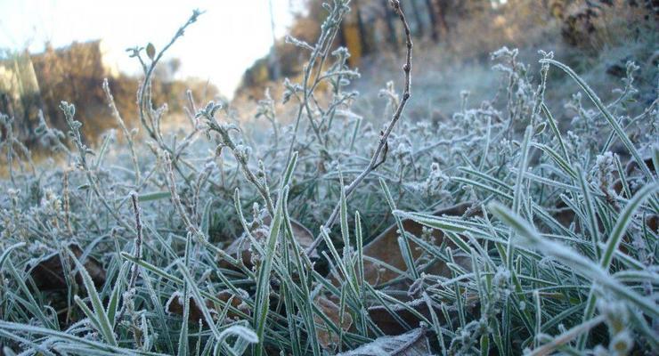 Погода в Украине на 19 апреля: Ночью возможны заморозки