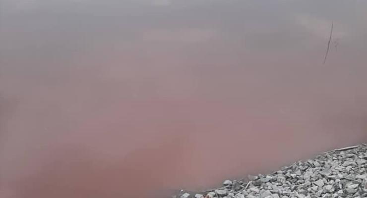Под Днепром нашли красный пруд: Сливают кровь животных