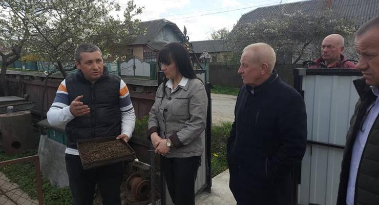 На Прикарпатье зафиксировали массовую гибель пчел