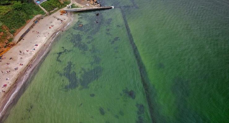 В Одессе из-за дождей позеленело море