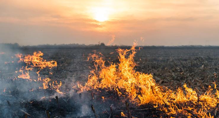 Украинцев предупредили о погодных контрастах: Опасность пожаров и шторм