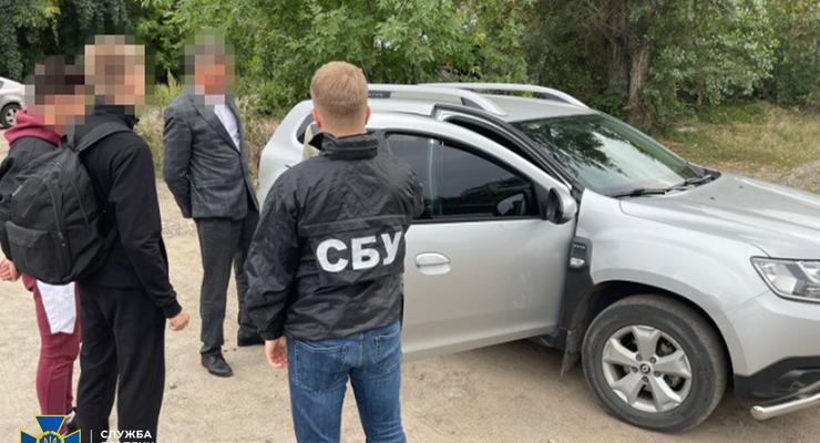 Возили в ЕС 30 фур леса за месяц: На контрабанде поймали двух бизнесменов