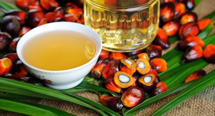 Пальмовое масло в Украине ограничат в использовании
